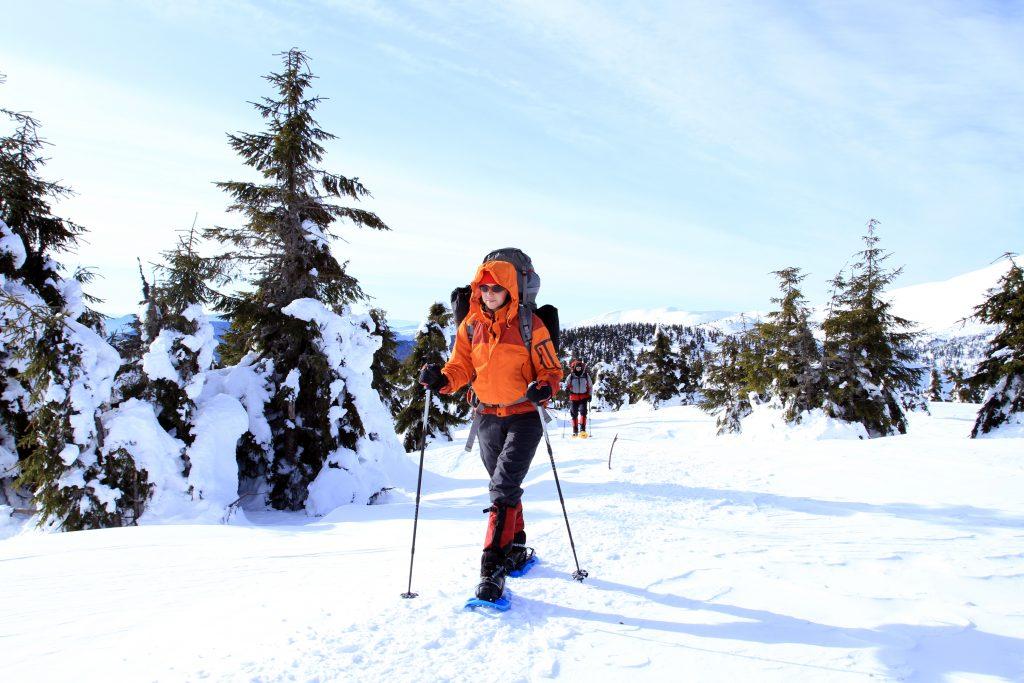 Hiking. Chamonix France